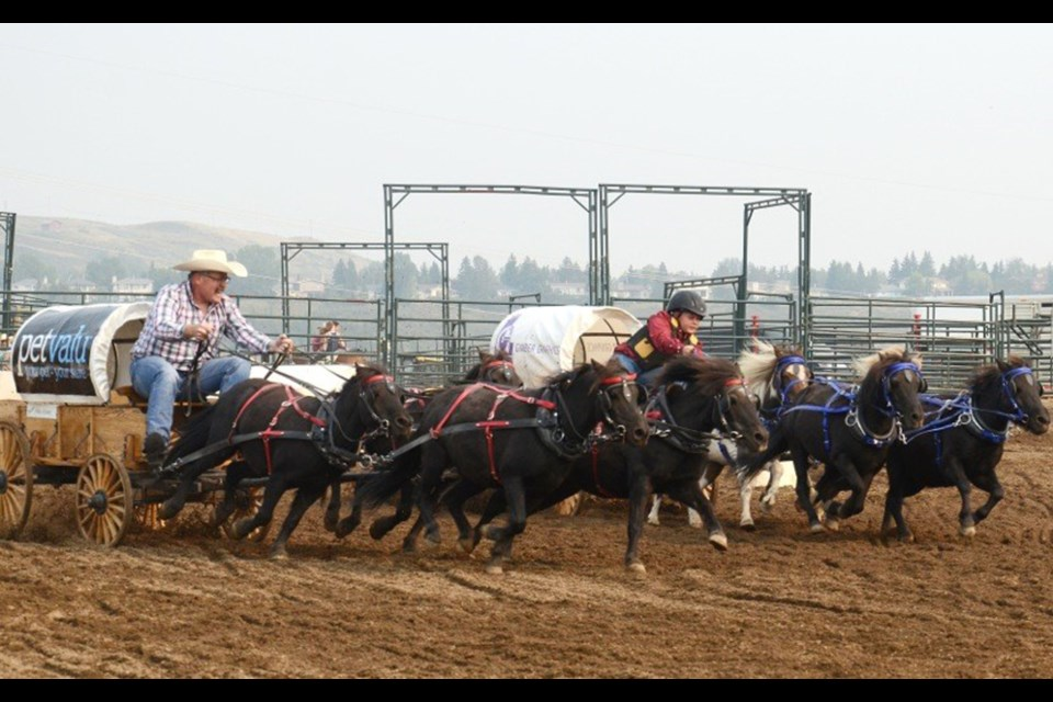 The Cochrane & District Agricultural Society is back with its seventh annual Cochrane Fair, Aug. 16 to 18. The event will feature mini-chuckwagon races, dog agility shows, motorcycle stunts, a midway and more. 
