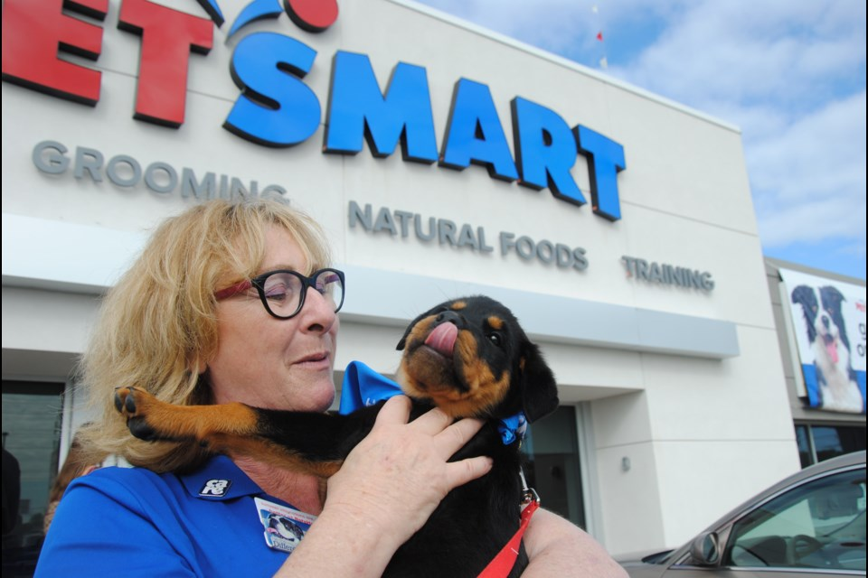 PetSmart's Barrie North store manager Deb Farrelly welcomes 10-week-old Anika. Ken Brown, Anika's pet parent, was one of the first to join in the grand opening celebration Saturday.