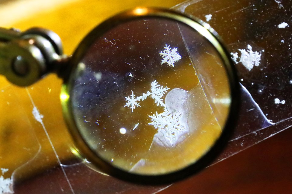 Preserved snowflakes on a microscope slide as viewed through a 19th century magnifying lens.  Kevin Lamb for BarrieToday.