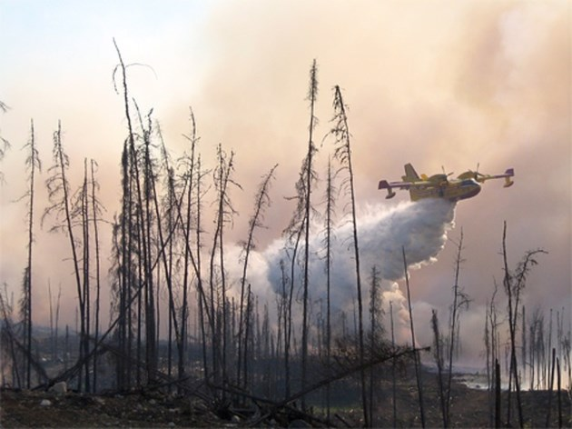 20180813 forest fire water bomber CL-415