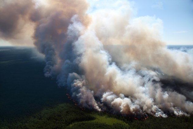 forest fire shutterstock_62922805 2016