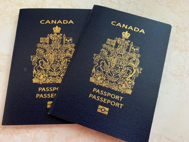 canadian passport simplified renewal guarantor