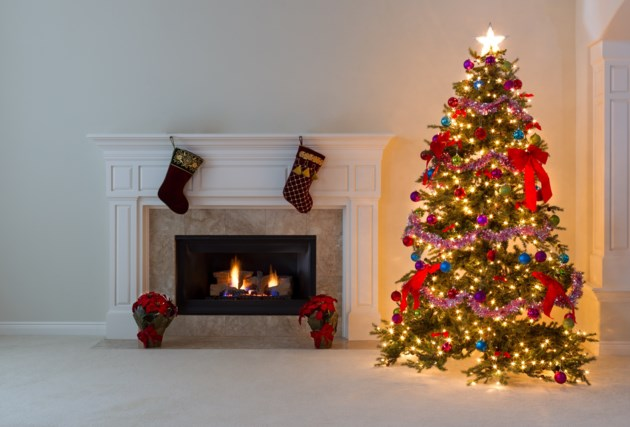 What to do with that Christmas tree? - BayToday.ca