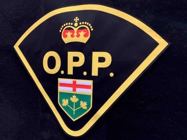 20190218 opp logo