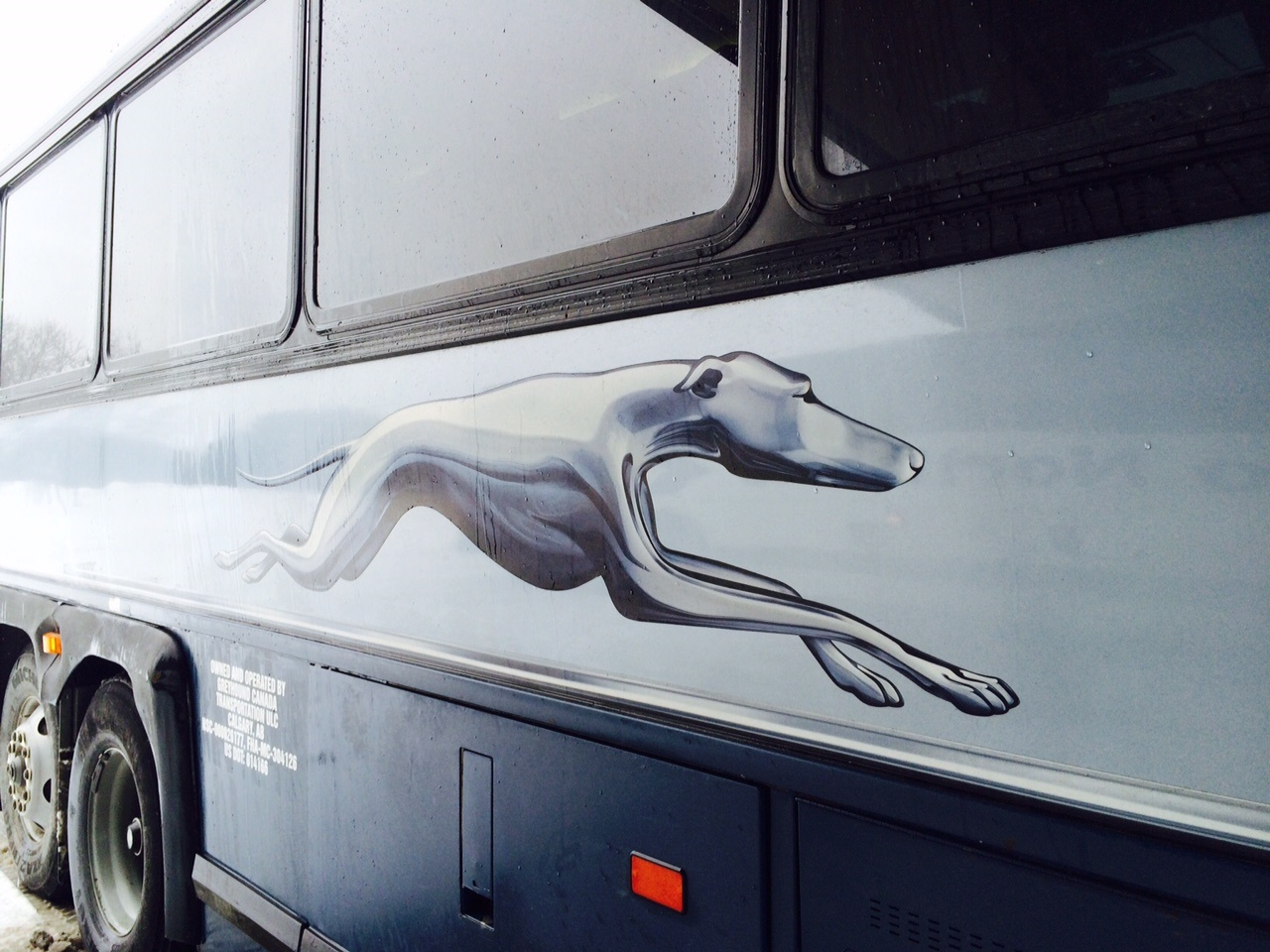 Waterloo Region will not be impacted by changes at Greyhound ...