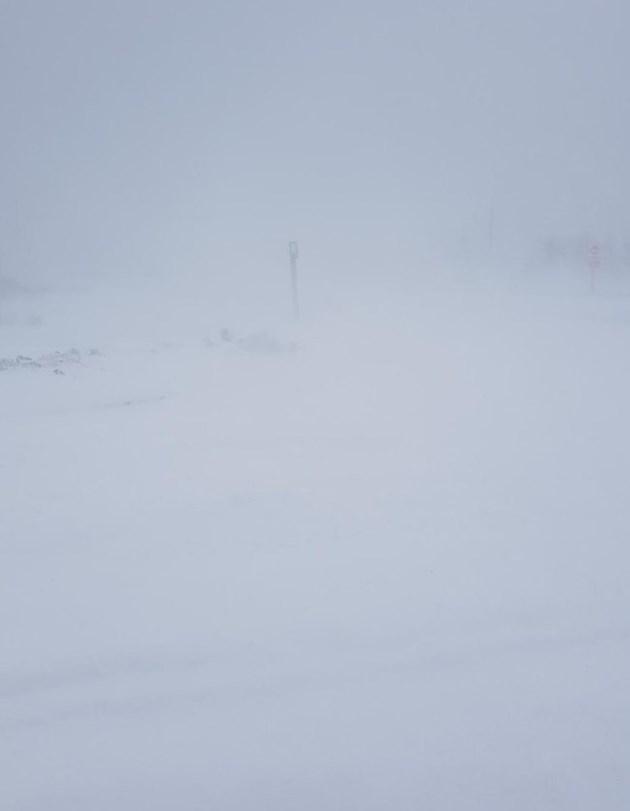 20190211 blizzard whiteout