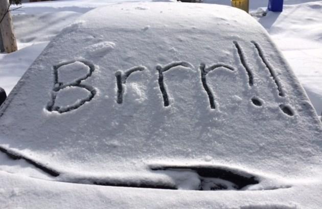 Brrr! cold turl 1 2016