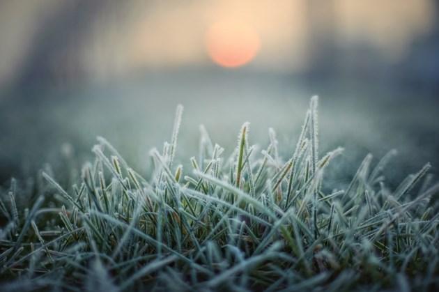 frost on grass shutterstock_219843502 2016