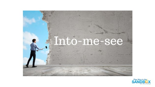 Into-me-see