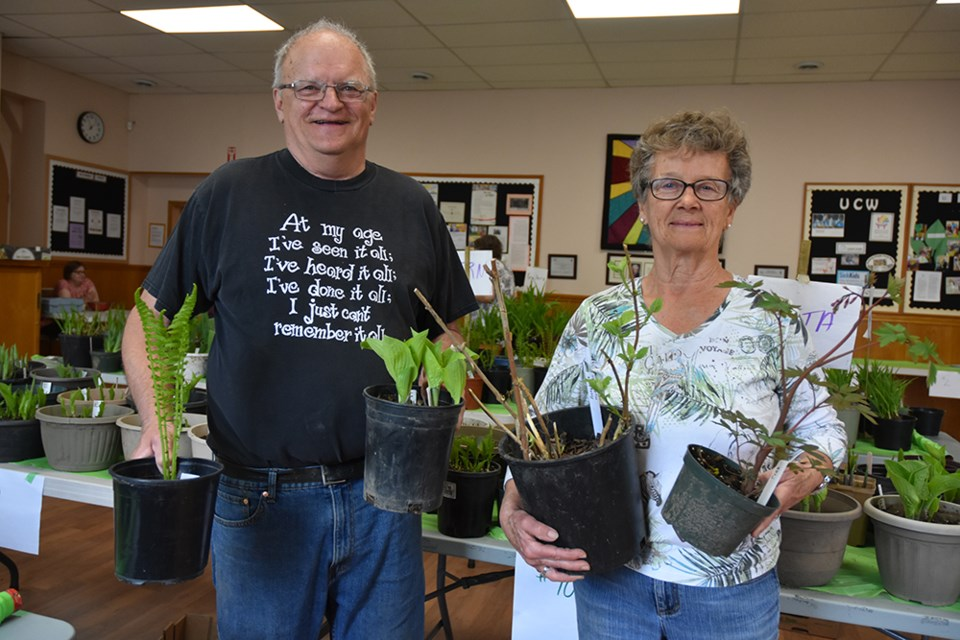 Bill Jermyn and Carol Bertram display some of the plants they shared at the Perennials Plus Plant Sale. Miriam King/Bradford Today