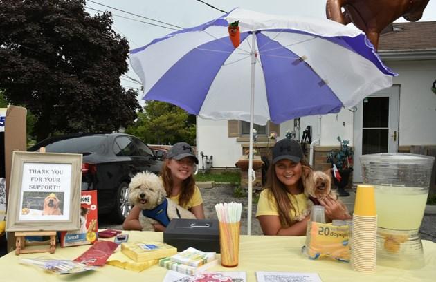 2018-08-20-charity lemonade stand