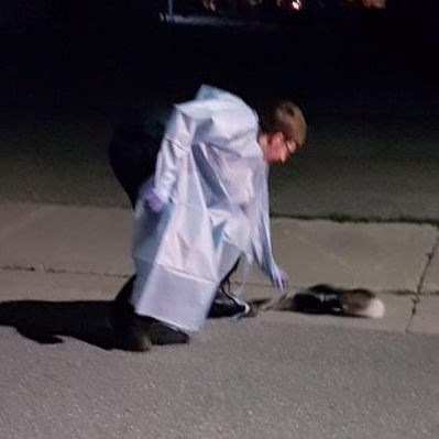 Craig, who declined to give his last name, helps a skunk get a Tim Hortons cup off its head. Twitter/Paramedics of OPSEU Local 303