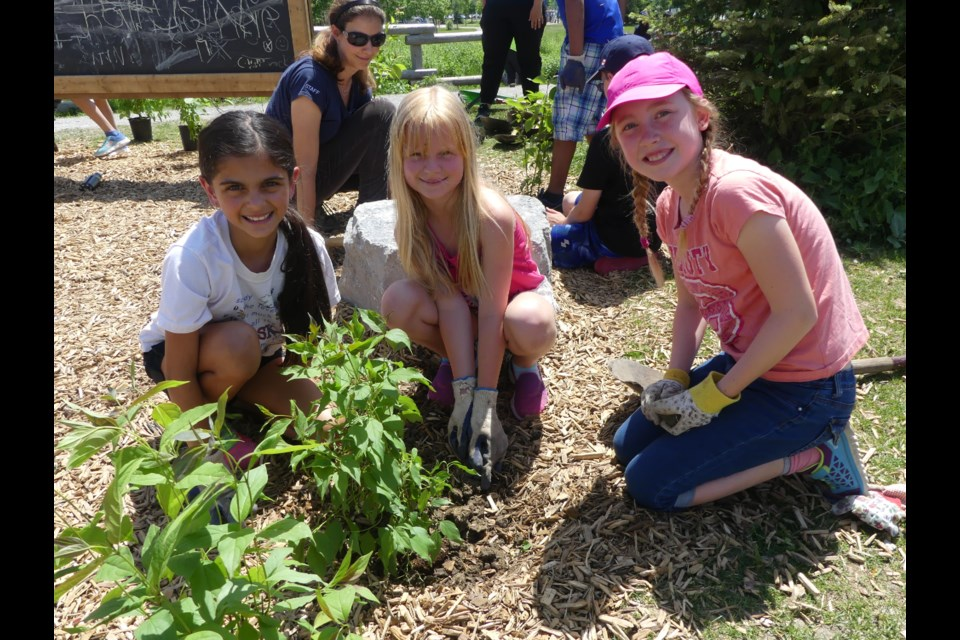 Kayla Tranton, 9, from left, Madison Lawless, 9, and Ilona Bardos, 9, plant a tree in their outdoor classroom. Jenni Dunning/Bradford Today