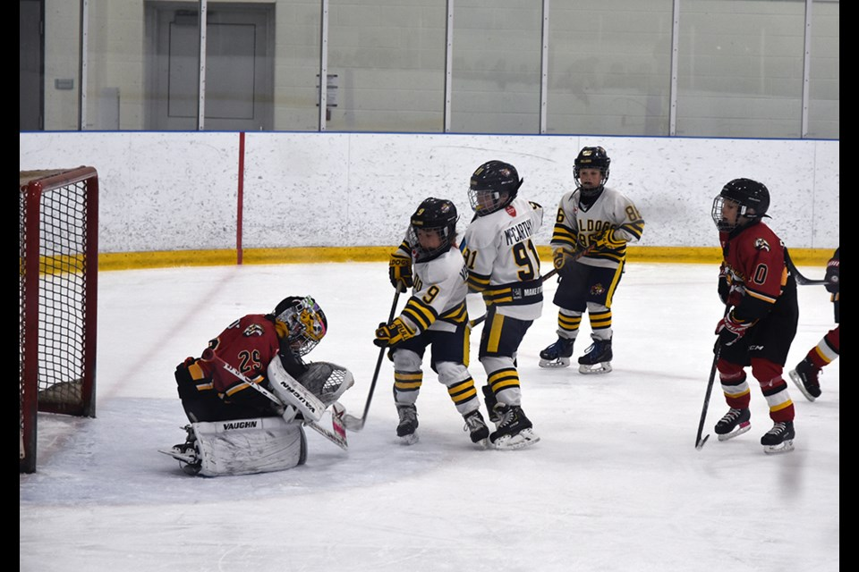 Bradford Bulldogs Novice A team couldn't solve in Innisfil goalie in Game 4, at the BWG Leisure Centre on Feb. 21.  Miriam King/Bradford Today