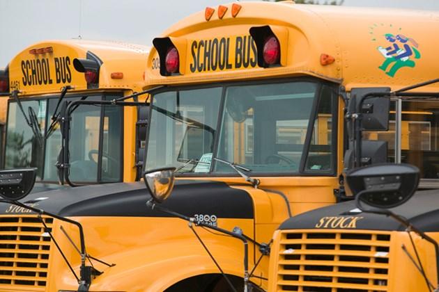 Stock Bus 1