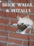 BrickWallsandPitfalls