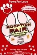 Adoption Fair
