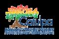 B Catulpa Logo