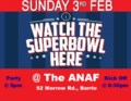 superbowl party 1