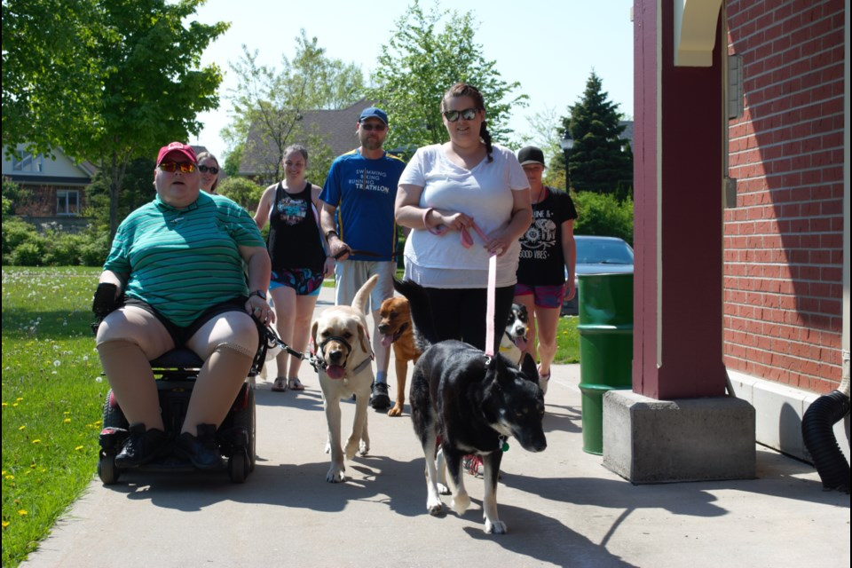 The Walk for Guide Dogs took place on Sunday, starting out at the Collingwood Museum. Jessica Owen/CollingwoodToday