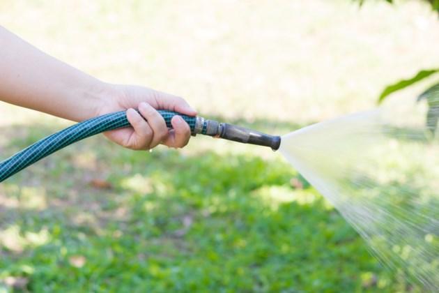 watering lawn shutterstock_248575882