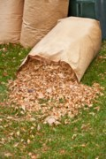 Spring yard waste collection starts May 8
