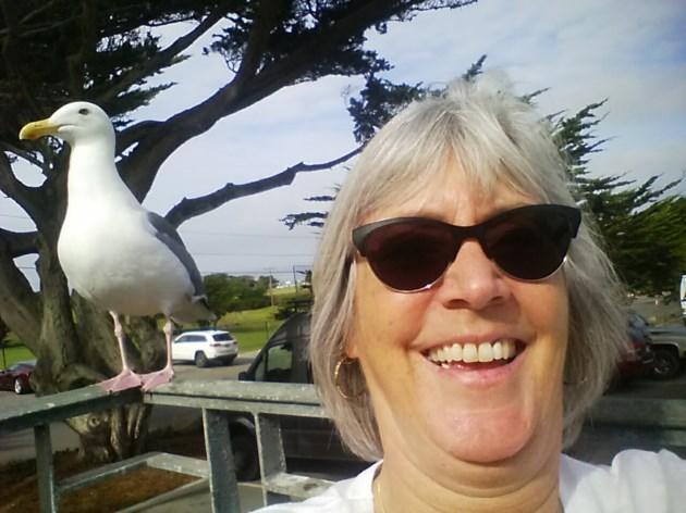 2017-11-18 Nancy Revie and gull