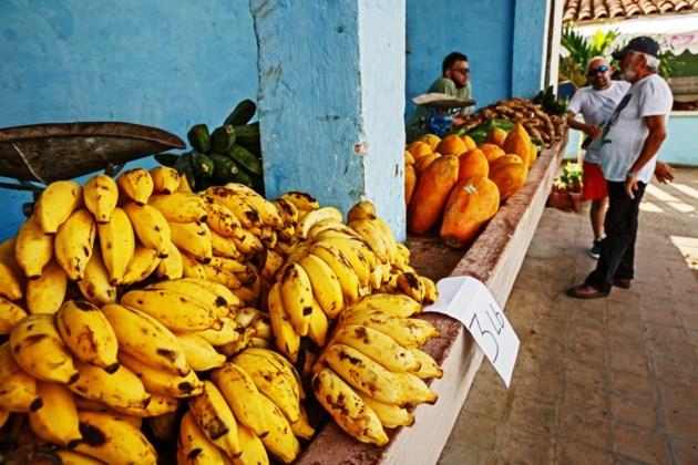 Cuba generic AdobeStock