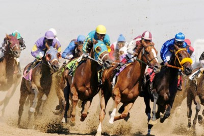 Horse racing 1- photo by Dave Landry