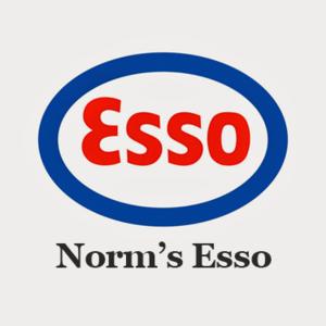 norms_esso