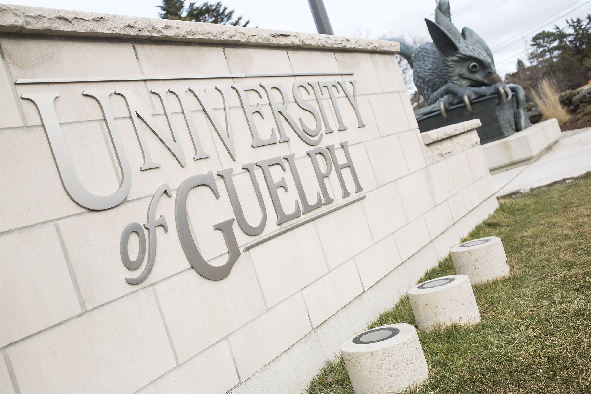 All not university of guelph sex study the