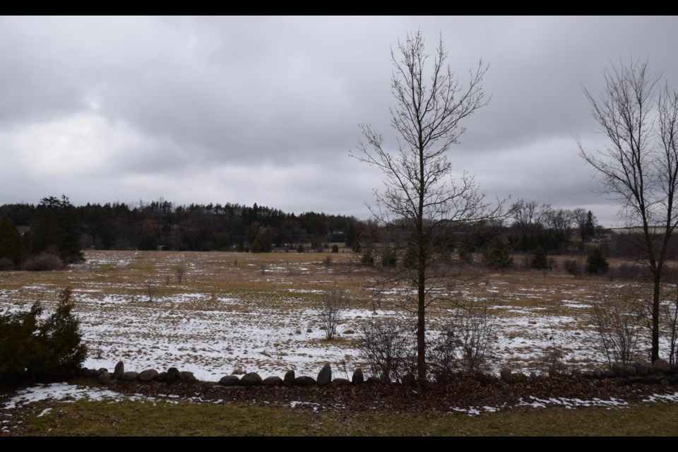 The view overlooking a 47-acre plot of land that Yorklands Green Hub wants to purchase.