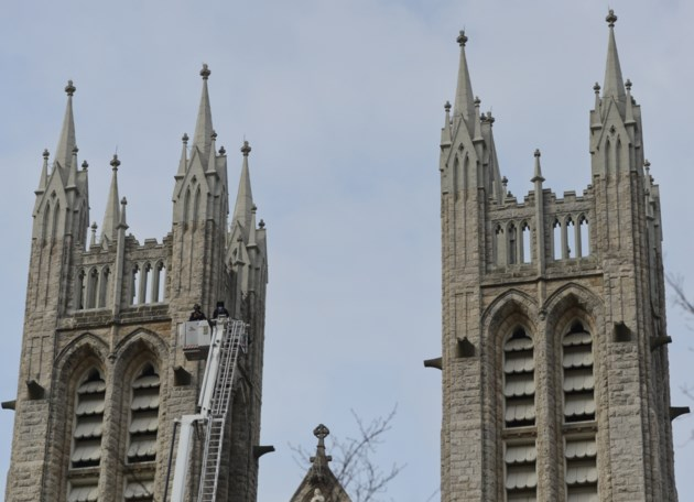Notre Dame's Three Rooftop Beehives (Containing Over 180,000 Bees) Survive Cathedral Fire