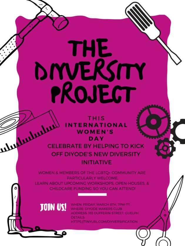 1 The DIYversity Project