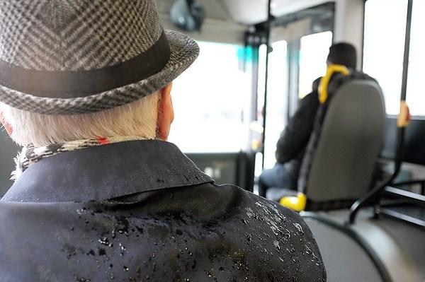 adult-blur-bus-126686 (600)