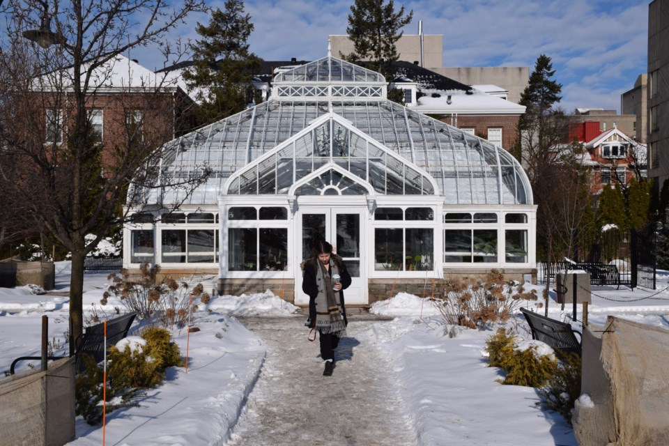 Small by comparison to other historic conservatories in North America, the one on the U of G campus is still an impressive structure. Rob O'Flanagan/GuelphToday