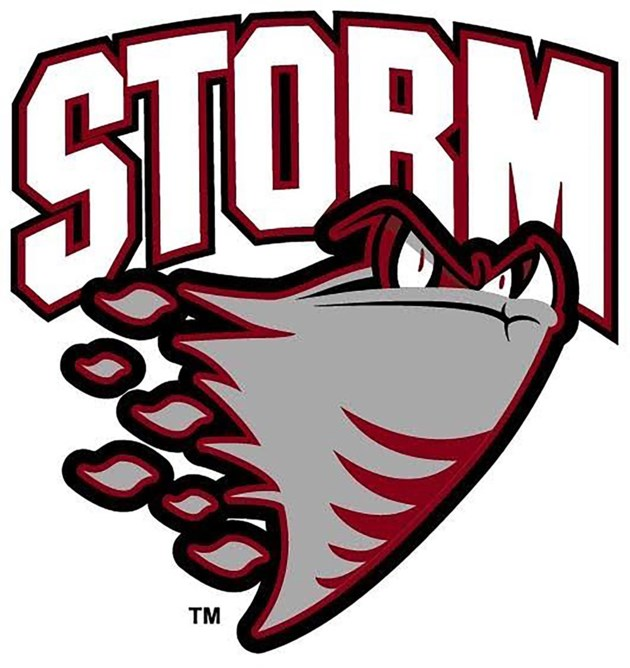 2016.02.03 Guelph Storm Logo