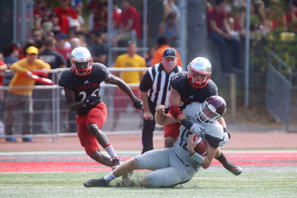 McMaster Marauders quarterback Jackson White is sacked by Guelph Gryphons players during a game Saturday at Alumni Stadium. Kenneth Armstrong/GuelphToday