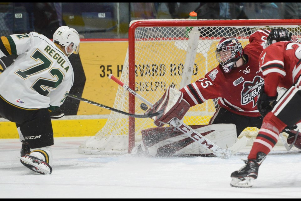 Guelph Storm goaltender Nico Daws makes a point blank save on London's Alec Ragula Wednesday at the Sleeman Centre. Tony Saxon/GuelphToday