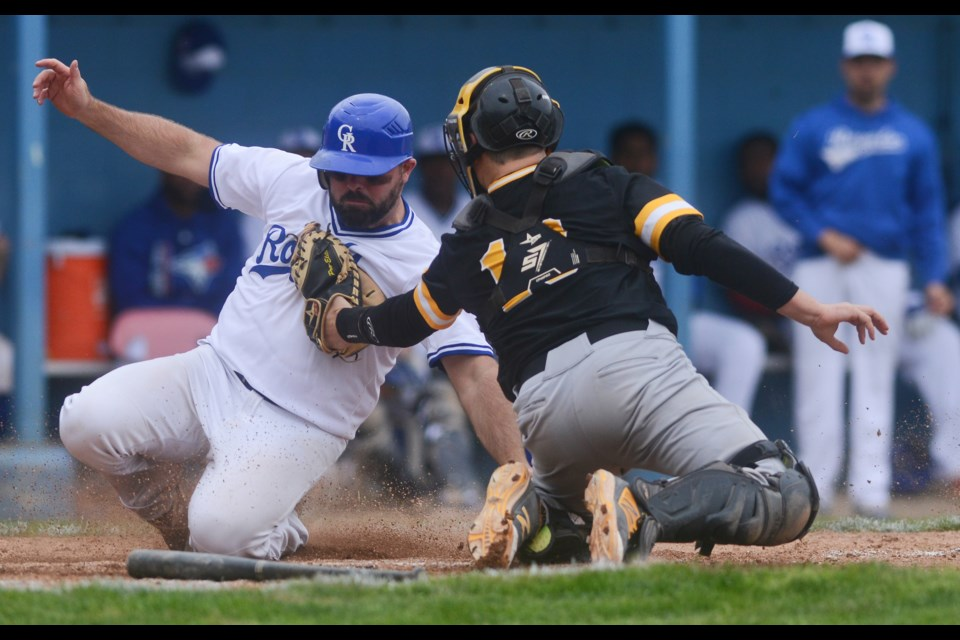 Guelph Royals baserunner Jeff MacLeod is tagged out at home plate by Kitchener Panters catcher Mike Gordner. Tony Saxon/GuelphToday