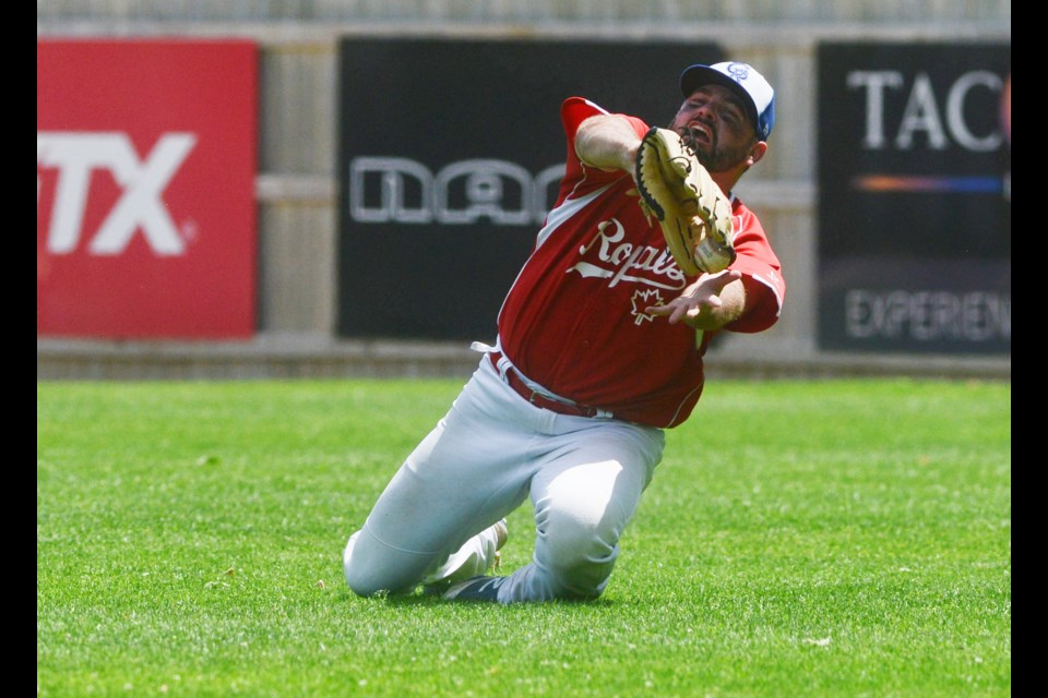 Jeff MacLeod of the Guelph Royals tries to make a sliding catch against the Kitchener Panthers at Hastings Stadium. Tony Saxon/GuelphToday
