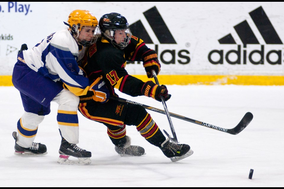 Averi Nooren (17) of the Guelph Gryphons tries to get to the puck ahead of Cassandra Calabrese (7) of the Laurier Golden Hawks during Wednesday's OUA women's hockey league playoff game at the Gryphon Centre. The Gryphs won 2-1. Rob Massey for GuelphToday.