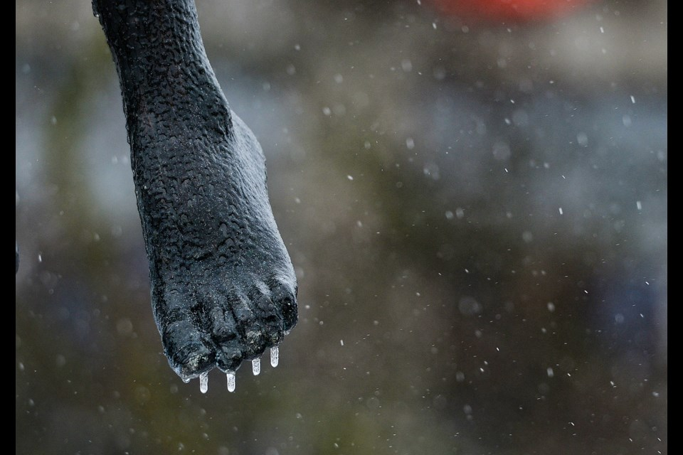 Chilly toes for The Family statue. Tony Saxon/GuelphToday