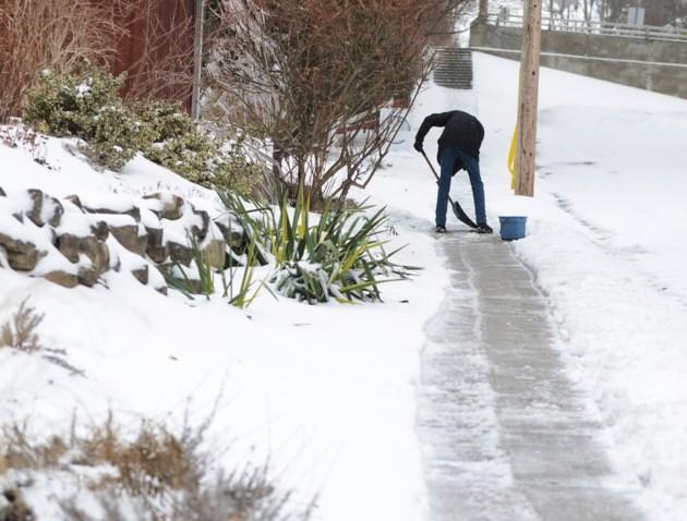 20190212 snow day ts 6