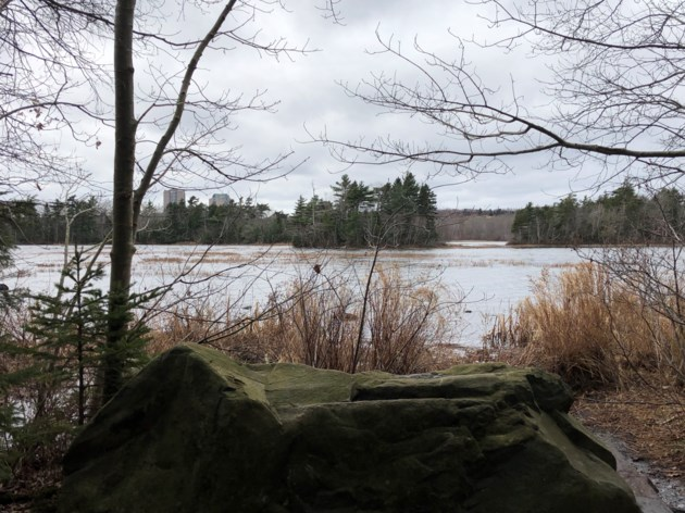 Human, dog and bird waste contributing to E. coli in Dartmouth lakes