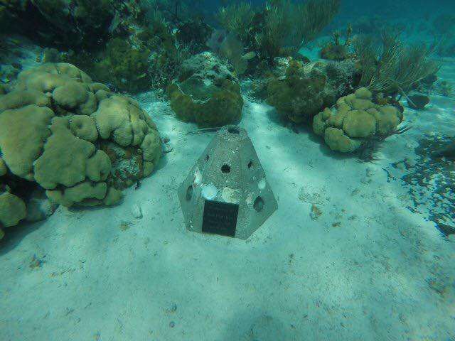 CANADA: Cremated remains can now be added to artificial ocean reef in Nova Scotia