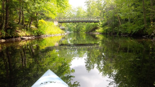 062419-Shubenacadie Canal-shubie park kayak