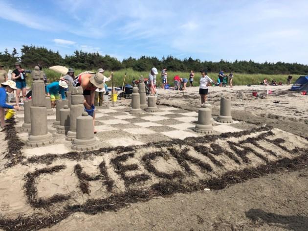 2018 clam harbour sandcastle competition  19 photos