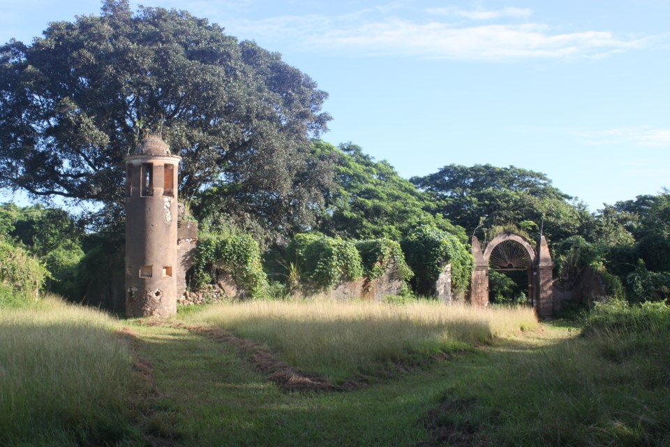 The Angerona Plantation (Photo courtesy of Saint Mary's University)