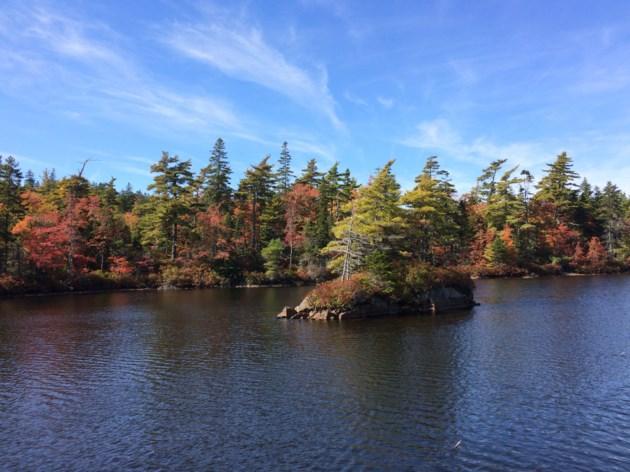 101717-fall-autumn-charlies lake-blue mountain birch cove-1